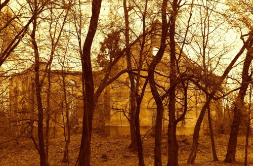 Niwiska.. ruiny w parku..