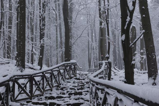 początek zimy w świętokrzyskim