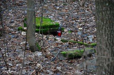 Trzonki - nieczynny cmentarz Ewangelicki