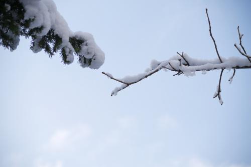 ...niech stanie się zima... ;)))