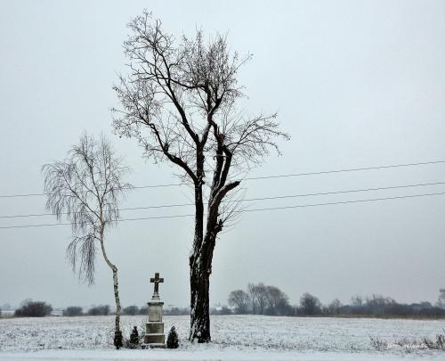 szaro-bura zima ...