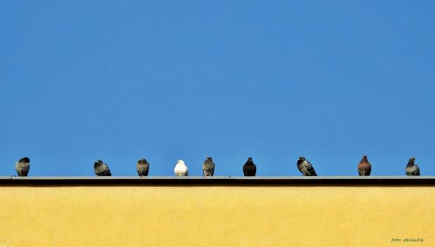 ... nad moim balkonem :)