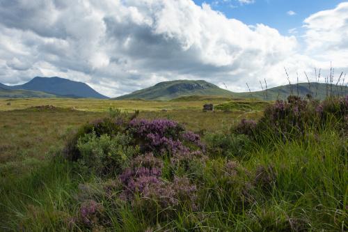 Okolice Loch Ba