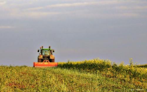 A prace w polu wrą :)