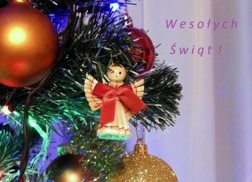 Wszystkim Fotosikowcom życzę zdrowych, spokojnych i radosnych Świąt Bożego Narodzenia !