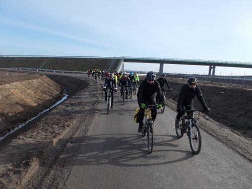 Grupa na drodze technicznej za wiaduktem nad S7 w Adamowie.