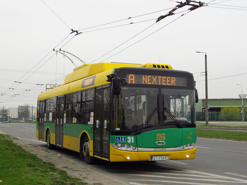 Solaris Trollino 12MB, #31, TLT Tychy