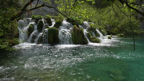 Plitwickie jeziora na Chorwacji