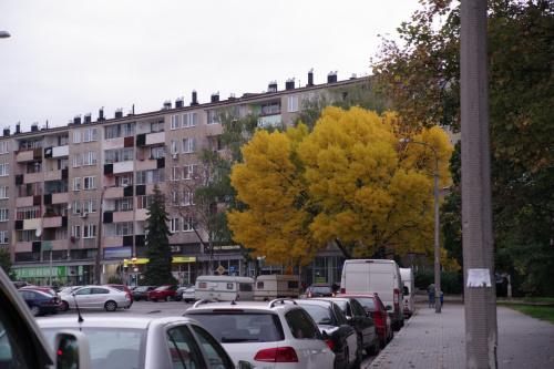 Nowa Huta- jesień