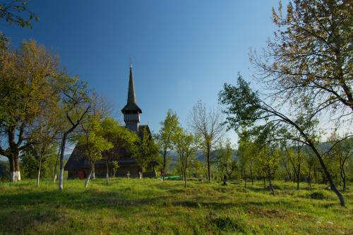 Cerkiew Wprowadzenia Matki Bożej do Świątyni
