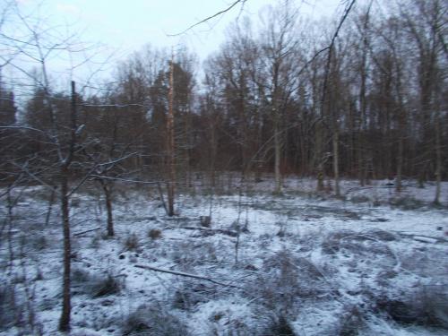 Wraca zimowa sceneria przed Nowym Monasterzyskiem