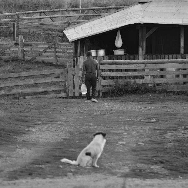 Rumunia - zwierzaki i ludzie