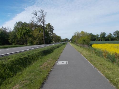 Wjazd do Malborka wzdłuż DK55