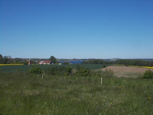 Jezioro Dzierzgoń w oddali