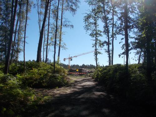 Las się przerzedził, znak że jesteśmy na miejscu budowy kanału żeglugowego