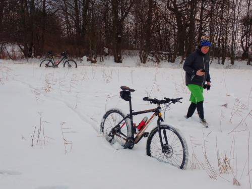 Rowery w naturalnych stojakach rowerowych