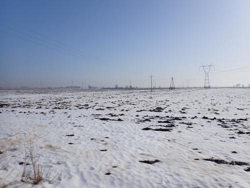 Żuławskie przestrzenie zimowe