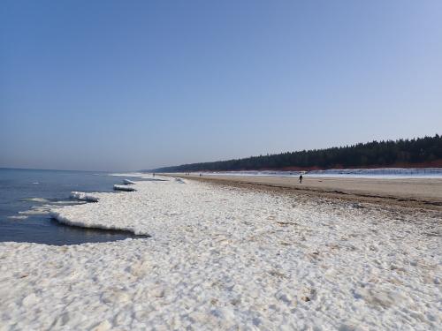 Jantar i biało-brązowa plaża