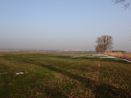 Żuławska panorama Elbląga