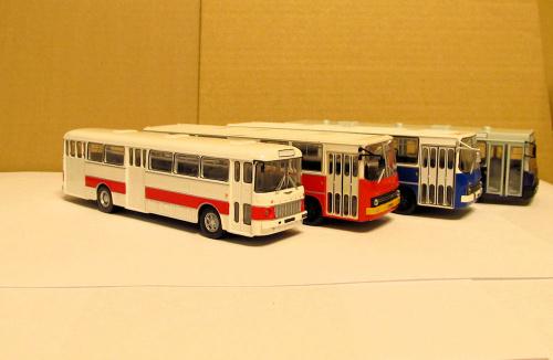 Od lewej Ikarus 556, 260 (x2) i 415