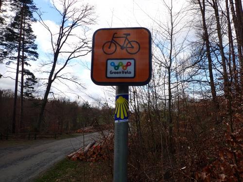 GreenVelo to długi szlak, ale gdzie mu do szlaków Jakubowych ;-)