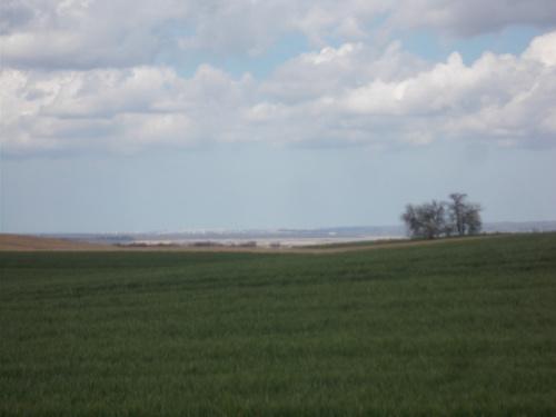 Elbląg bieleje na horyzoncie