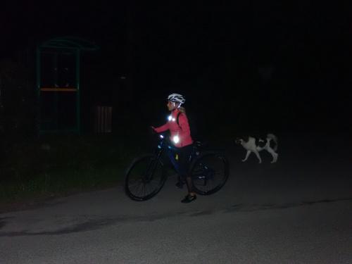 Jest i Sylwia z psem. Co to za pies?