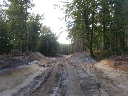 Leśnicy remontują Białą Drogę