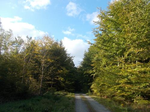 Czuć już jesień na Białej Drodze, chociaż słońce jeszcze letnie