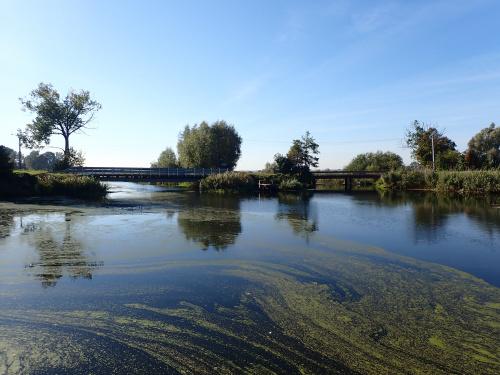 Ujście Raduni i Czarnej Łachy do Motławy
